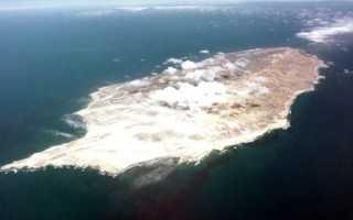 История выживания: Хуана Мария — последняя из индейцев николеньо