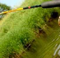 Рыбная ловля: Основы ловли на спиннинг