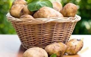 Чуньо — хранение картофеля методом индейцев Южной Америки
