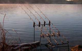 Рыбная ловля: Основы ловли на донку