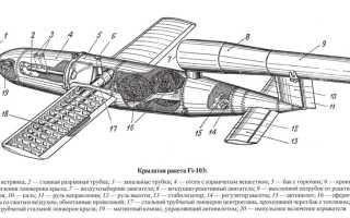 Опытная крылатая ракета Raptor-1 (ЮАР)