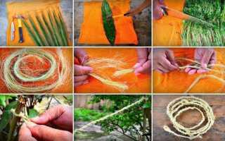 Как сделать верёвку из растений: юкка, тростник, крапива, молочай