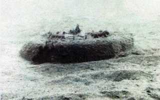 Донная неконтактная мина MN103 «Manta» (Италия)