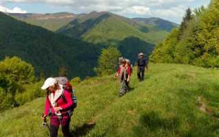 5 правил эффективной пешей прогулки и успешного похода