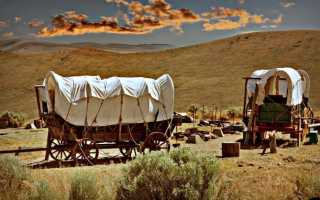 Выживание в пути: Опыт американских переселенцев-караванщиков