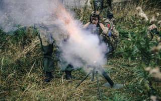 Ручные дымовые гранаты РДГ-1 и РДГ-2ч (СССР)