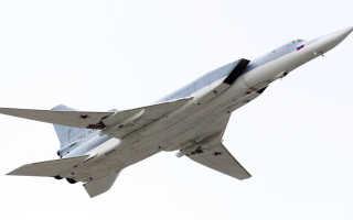 Опытная крылатая ракета Raptor-2 (ЮАР)